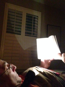 My husband couldn't stop reading The Art of Falling even after the power went out.